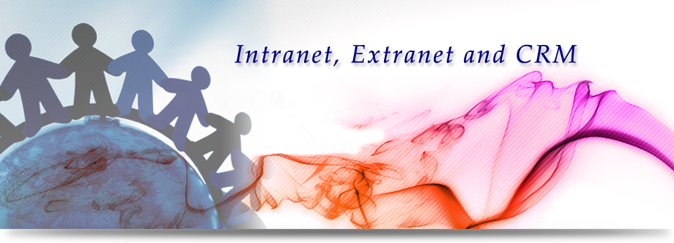 Intranet, Extranet and CRM